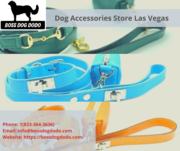 Dog accessories store in Las Vegas | Boss Dog Dodo